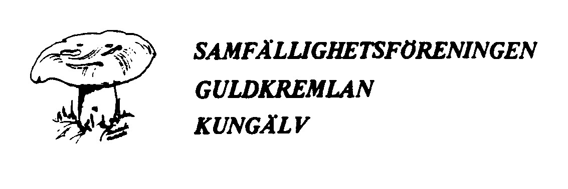 logobild-GK-130401